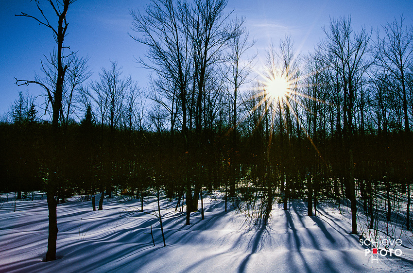 Winter in the Chequamegon National Forest.