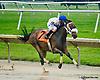 Barbara's Beauty winning at Delaware Park racetrack on 6/12/14