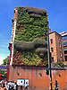 Side of a building at the Elephant & Castle turned into a garden and completely covered with green plants.<br /> <br /> Stock Photo by Paddy Bergin