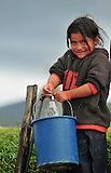 Otavalo, Ecuador, niños indigenas disfrutan de agua potaqble gracias a  la cooperacion de la empresa Lafarge Cementos