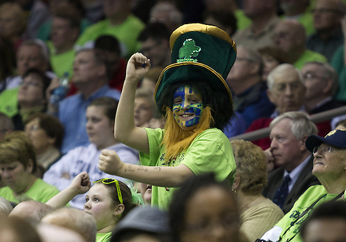 March 04, 2013:  Notre Dame fan during NCAA Basketball game action between the Notre Dame Fighting Irish and the Connecticut Huskies at Purcell Pavilion at the Joyce Center in South Bend, Indiana.  Notre Dame defeated Connecticut 96-87 in triple overtime.