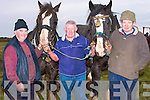 OLD FASHIONED: Sonny Egan (Abbeydorney), Tom Barrett and John O'Connor (Causeway) ploughing the old fashion way at the Causeway Ploughing Competition on Sunday on Timmy Leahy's land Causeway.....................