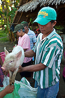Piglet Vendor at Malatapay Market where livestock growers, local farmers and fishermen hold a large market every Wednesday for locals from neighboring towns and sometimes use the traditional Filipino barter system among themselves.  When it is not Wednesday Malatapay is an oddly quiet place with very little activity going on.