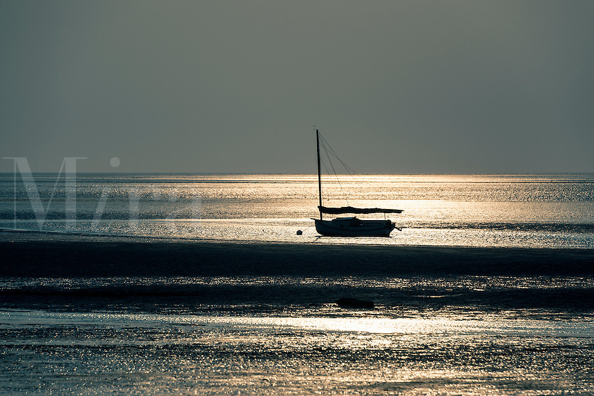 Sailboat in Cape Cod Bay, Crosby Beach, Brewster, Cape Cod, Massachusetts, USA