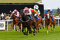 Winner of The Simon & Nerys Dutfield Memorial Novice Stakes,Youkan ridden by Martin Lane and trained by Stuart Kittow during Afternoon Racing at Salisbury Racecourse on 18th May 2017