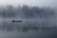 &quot;Through the Fog&quot;<br />