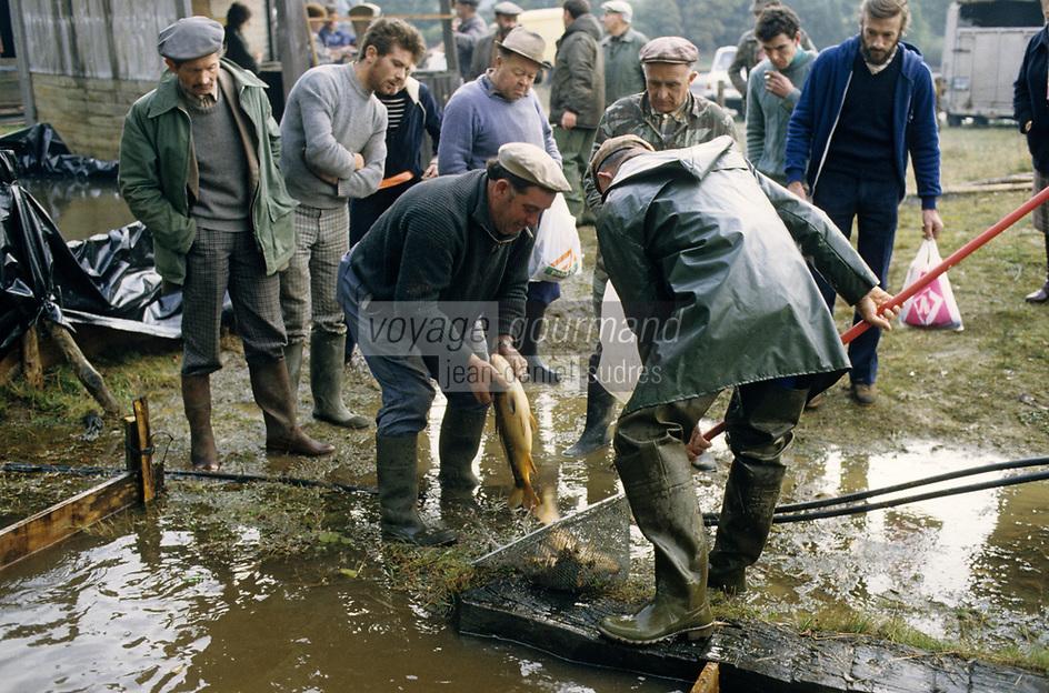 Europe/France/Limousin/23/Creuse/Env Bourganeuf: Pêche à l'étang de la Bassat<br /> PHOTO D'ARCHIVES // ARCHIVAL IMAGES<br /> FRANCE 1990