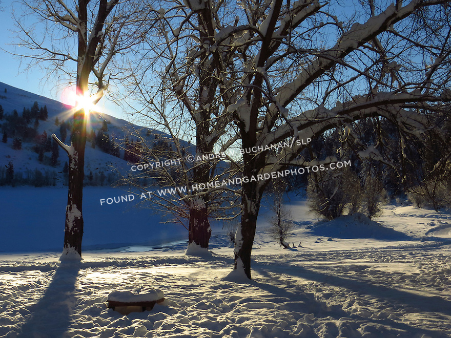 Morning sunshine emerges over the hillside on a beautiful winter morning in the Methow Valley, Washington.