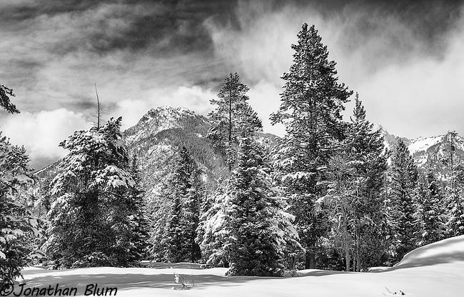 Solitude, Grand Teton National Park