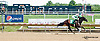 Tiz A Par winning at Delaware Park on 8/5/13