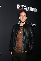 """LOS ANGELES - NOV 4:  Alex Blue Davis at the """"Grey's Anatomy"""" 300th Episode Event at Tao on November 4, 2017 in Los Angeles, CA"""
