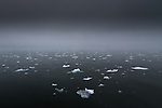 Bergy bits float in the Arctic Ocean, Svalbard, Norway