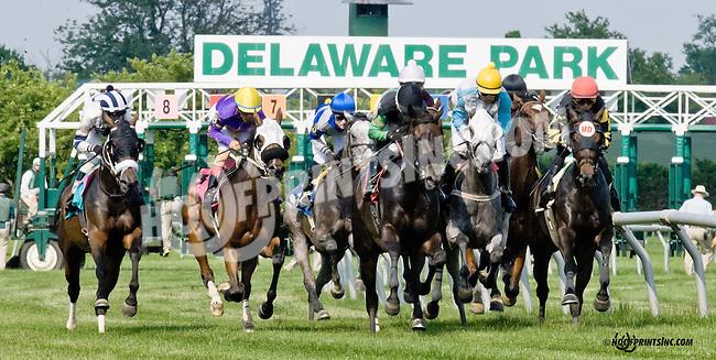Debbie's Tude winning at Delaware Park racetrack on 6/16/14