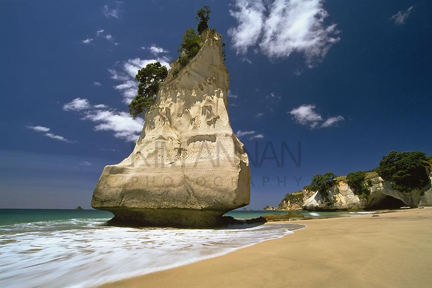 CATHEDRAL COVE ROCK<br /> Te Whanganui-A-Hei