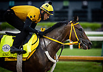September 2, 2020:  King Guillermo exercises as horses prepare for the 2020 Kentucky Derby and Kentucky Oaks at Churchill Downs in Louisville, Kentucky. The race is being run without fans due to the coronavirus pandemic that has gripped the world and nation for much of the year. Evers/Eclipse Sportswire/CSM