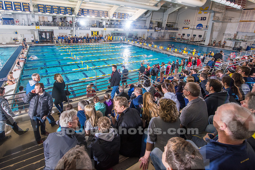 The University of Michigan women's swimming and diving team; 190-110 victory over Ohio State University at Canham Natatorium in Ann Arbor, Mich., on Jan. 24, 2015.