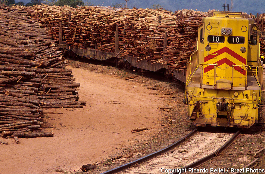 Logging, Amazon rainforest, firewood for charcoal production transported by train for feeding the pig iron industry.