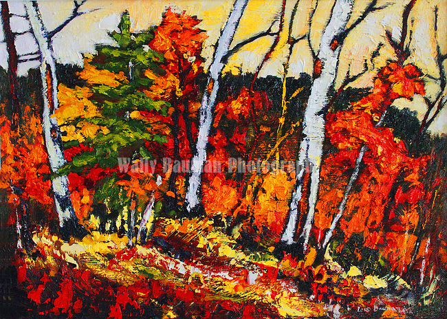 NEW PAINTING BY LOIS.<br /> &quot;OCTOBER GLOW&quot;.<br /> Lois Bauman is a signature member of the Alberta Society of Artists, an associate member of the Oil Painters of <br /> America, and an active member of the Federation of Canadian Aritsts.  Her paintings, rendered in an impressionistic style using loose brush strokes in brilliant colours, depict the landscapes of Canada.<br /> Her paintings can be found accross Canada, and in Japan, Wales, Ireland, England, New Zealand, Australia, and the U.S.A.