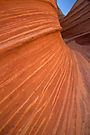 Striated sandstone of the Wave in Coyote Buttes, Arizona, USA