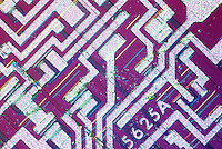 INTEGRATED CIRCUIT(IC) ON SILICON  CHIP<br /> Using Phase Interference microscope<br /> Photomicrograph shows circuitry produced by chemical etching of silicon wafer