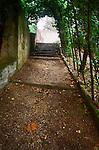 Walkway in Boboli Garden, under vines in Florence, Italy
