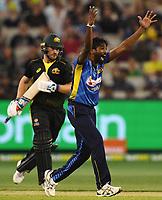 1st November 2019; Melbourne Cricket Ground, Melbourne, Victoria, Australia; International T20 Cricket, Australia versus Sri Lanka; Nuwan Pradeep of Sri Lanka appeals for a wicket - Editorial Use