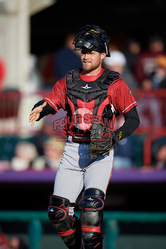 Altoona Curve catcher Arden Pabst (53) during an Eastern League game against the Erie SeaWolves on June 3, 2019 at UPMC Park in Erie, Pennsylvania.  Altoona defeated Erie 9-8.  (Mike Janes/Four Seam Images)