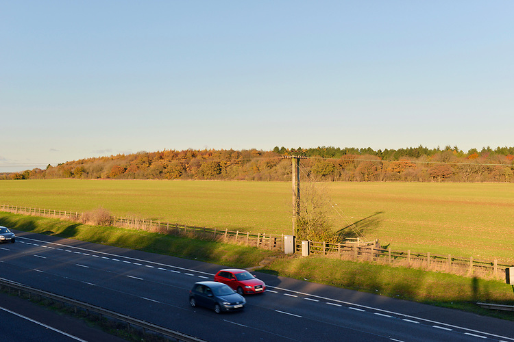 Stoke Wood with M40 in foreground, Oxfordshire.