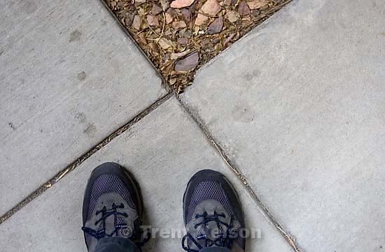 trent feet. Casper - Trip to the Wyoming Press Association's Winter Convention; 01/15/2004<br />