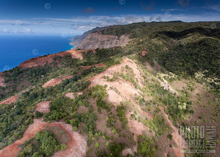 An aerial view of Waimea Canyon Ridge, Kaua'i