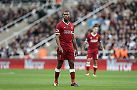 Liverpool's Daniel Sturridge<br /> <br /> Photographer Rich Linley/CameraSport<br /> <br /> The Premier League -  Newcastle United v Liverpool - Sunday 1st October 2017 - St James' Park - Newcastle<br /> <br /> World Copyright &copy; 2017 CameraSport. All rights reserved. 43 Linden Ave. Countesthorpe. Leicester. England. LE8 5PG - Tel: +44 (0) 116 277 4147 - admin@camerasport.com - www.camerasport.com