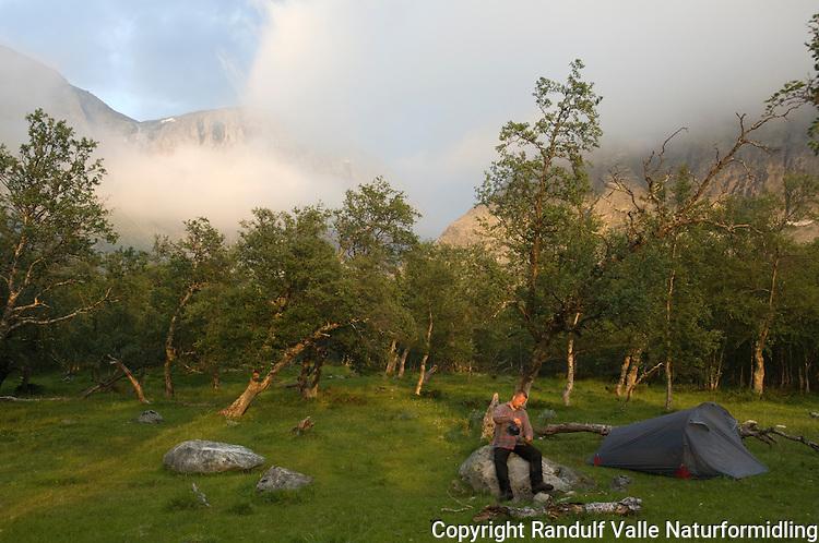 Teltleir i bjørkeskogen en sommerkveld ---- Camp site in summer evening