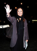 NIKI KARIMI.arrives at the Patricia McQueeney Award Dinner Party Hosted By Vanity Fair on the eighth day of Rome Film Festival (Festa Internazionale di Roma) at the Etruscan Museum Valle Giulia, Rome, Italy, October 20th 2006..half length red carpet hand waving.Ref: CAV.www.capitalpictures.com.sales@capitalpictures.com.©Luca Cavallari/Capital Pictures.