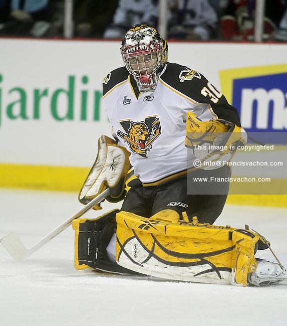 QMJHL (LHJMQ) hockey profile photo on Victoriaville Tigres David Honzik January 30, 2011 at the Colisee Pepsi in Quebec city.