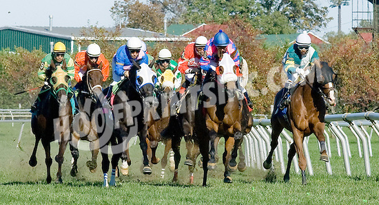 Dr. Skip winning at Delaware Park on 10/13/12