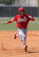 March 19, 2010:  Catcher Charlie Cutler of the St. Louis Cardinals organization during Spring Training at the Roger Dean Stadium Complex in Jupiter, FL.  Photo By Mike Janes/Four Seam Images
