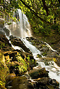 Another shot from the left of this large waterfall, this time from about a 1/4 of the way up, on a puffy-cloud late afternoon, summer 2009 in Colebrook NH