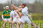 Mikey Boyle Kerry in action against Mark Moloney Kildare in the National Hurling League at Abbeydorney on Sunday.