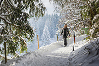 Deutschland, Oberbayern, Chiemgau, zwischen Siegsdorf und Ruhpolding: Winterspaziergang | Germany, Upper Bavaria, Chiemgau, between Ruhpolding and Siegsdorf: winter scenery, walking