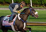 LOUISVILLE, KENTUCKY - APRIL 29: Restless Rider, trained by Kenny McPeek, exercises in preparation for the Kentucky Oaks at Churchill Downs in Louisville, Kentucky on April 29, 2019. Scott Serio/Eclipse Sportswire/CSM