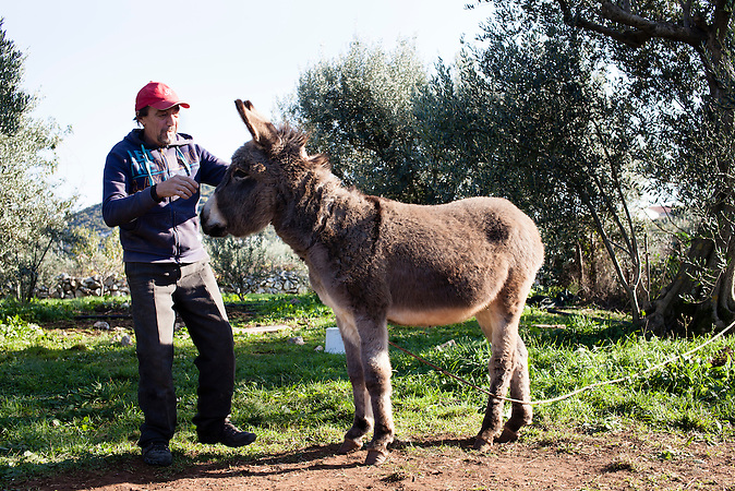 Ein Portrait von Hussein und dem Esel Bruno auf dem Campingplatz von Toni Bačić  in Neum, Bosnien. Hussein arbeitet dort als Tagelöhner, um sein Leben zu finanzieren. Er hat im Tschetschienkrieg auf der Seite der Rebellen gekämpft und wurde von den Russen gefangengenommen. Danach hat er einige Jahre in Italien gelebt. Der gläubige Muslim gehört zu den wenigen Moslems, die in Neum leben. / A portrait of Hussein an the donkey Bron at the camping-place of Toni Bačić  ind Neum Bosnia. Hussein is working at the camping site on a daily basis to be able to make a living. Hussein has fought in the War of Chechnya against Russia and was caught an imprisoned by the Russian Army. After that he lived in Italy for a couple of years. Hussein is Muslim and belongs to the small group of muslims in Neum.<br />Der kleine Ort Neum liegt in Bosnien-Herzegovina und bildet den einzigen Zugang zum Meer des Balkanlandes. Auf einer Länge von 9 km durchschneidet der Ort das kroatische Staatsgebiet (Neum-Korridor) Seit dem EU-Beitritt Kroatiens ist Neum auf beiden Seiten von EU-Außengrenzen eingeschlossen. / The small city of Neum in Bosnia and Herzegovina is the only place in Bosnia, where the country has access to the adriatic sea. Over a length of 9 kilometers the area cuts Croatian territory in two pieces. Since Croatia became part of the European Union, the city of Neum is enclosed between two EU-boarders.