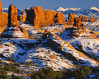 Afternoon winter light on the Parade of the Elephants below the La Sal Mountains; Arches National Park, UT