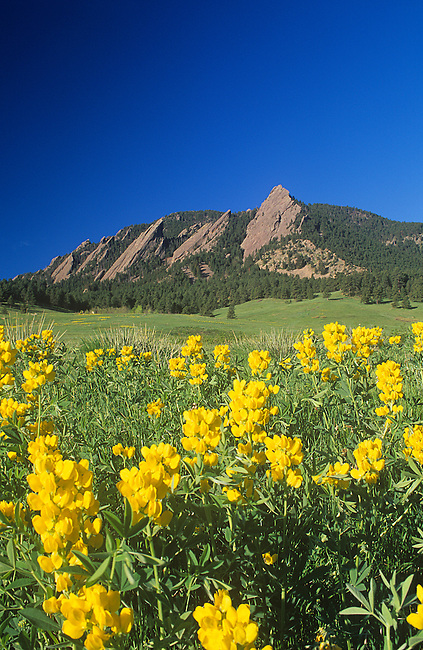 Golden Banner, Flatirons, Boulder, Colorado