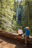 USA, Oregon, Oregon Cascades, young boys hike and check out the upper Proxy Falls in the Wilamette National Forest in the early Fall, McKenzie Pass