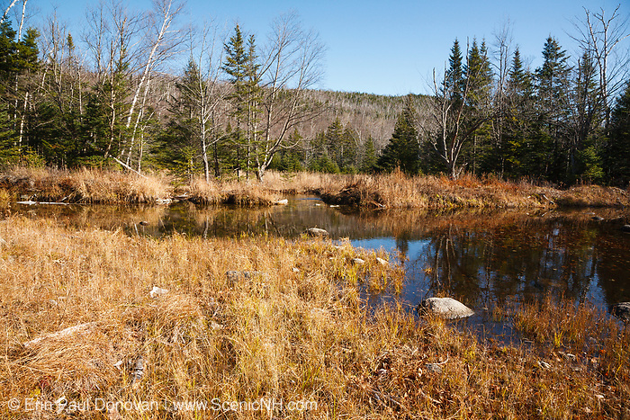 "Wetlands area along Flat Mountain Pond Trail in Waterville Valley, New Hampshire. This trail follows the old Beebe River Railroad (1917-1942), and this area was referred to as the ""Horseshoe"", which was a very sharp turn along the railroad near logging Camp 9."