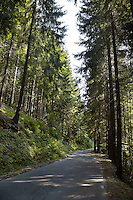 FOREST_LOCATION_90117