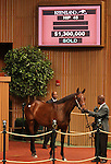 Hip #45 Smart Strike - Untouched Talent filly sold for $1,300,000 at the Keeneland September Yearling Sale.  September 10, 2012.