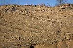 Cross bedding in sandy strata, Sudbourne, Suffolk Sandlings, England