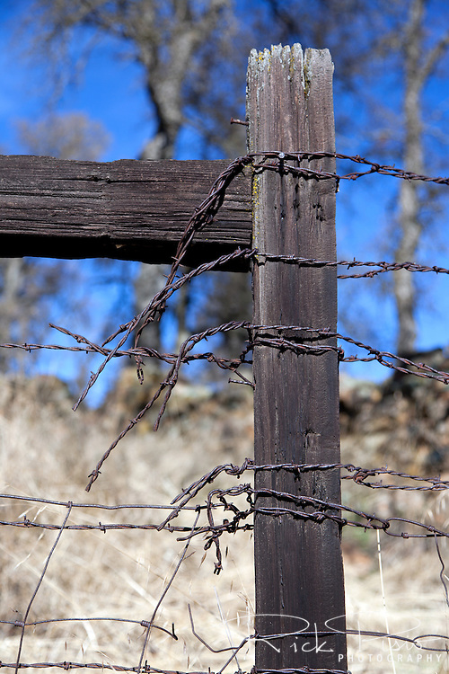 Fence post and barbed wire, Calaveras County, Calfironia.