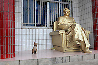 "A puppy sits next to a statue of Mao Zedong at the home of a ""Red"" memorabilia collector and manufacturer, near Mao's birthplace in Shaoshan, Hunan Province, China on 12 August 2009."